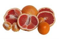 Grapefruit (Citrus paradise)